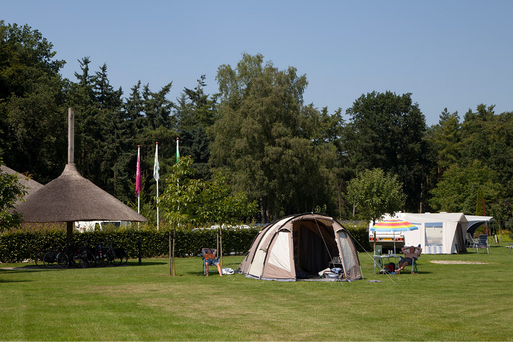Camping 't Meulenbrugge - Vorden - IMG_2930 Regio Achterhoek - Liemers