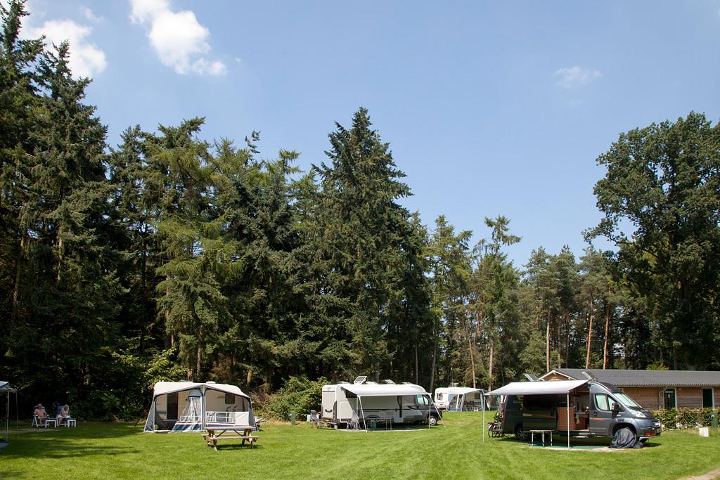Camping 't Meulenbrugge - Vorden - IMG_2946