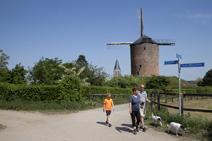 De Grafelijke Torenmolen - Zeddam Regio Achterhoek - Liemers