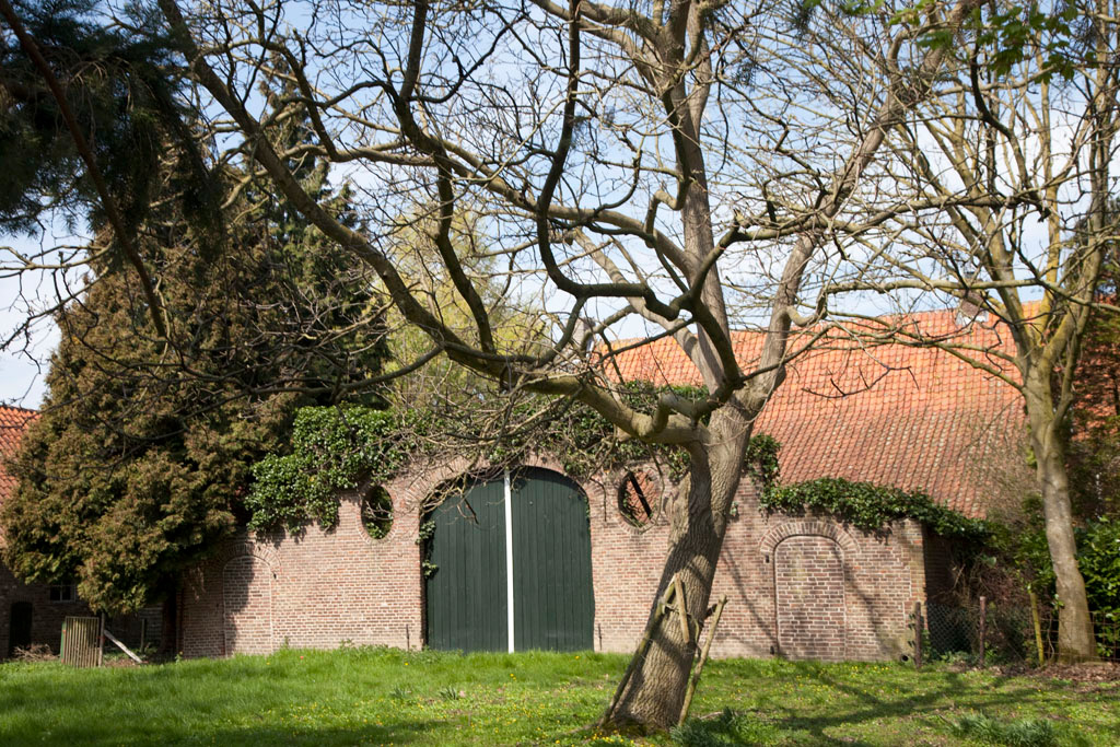 Havezate Luynhorst - Greffelkamp - IMG_1293