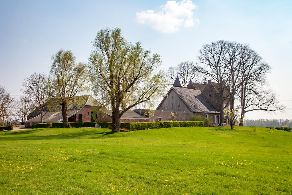 Huis Loowaard - Loo - IMG_0473 Regio Achterhoek - Liemers