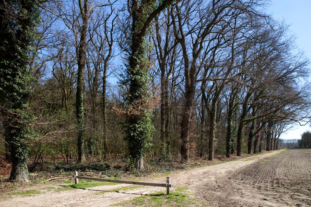 Huize de Byvanck - Beek - IMG_9914 Regio Achterhoek - Liemers