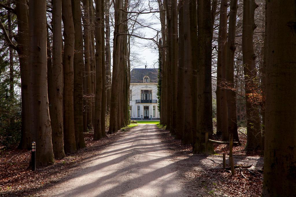 Landgoed Tandem - Westendorp - IMG_7666 Regio Achterhoek - Liemers