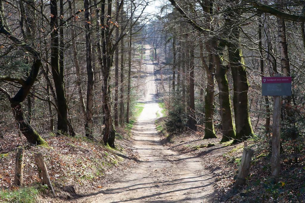 Motte Montferland - Zeddam - IMG_8122 Regio Achterhoek - Liemers