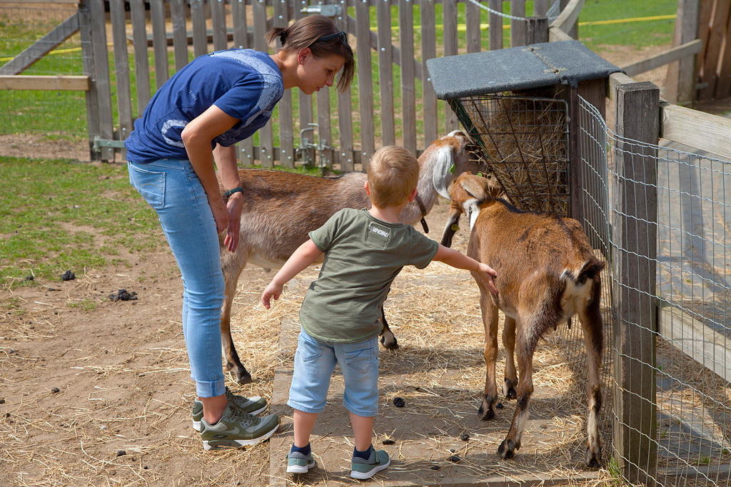 Kinderboerderij Engbergen - Gendringen - IMG_2598