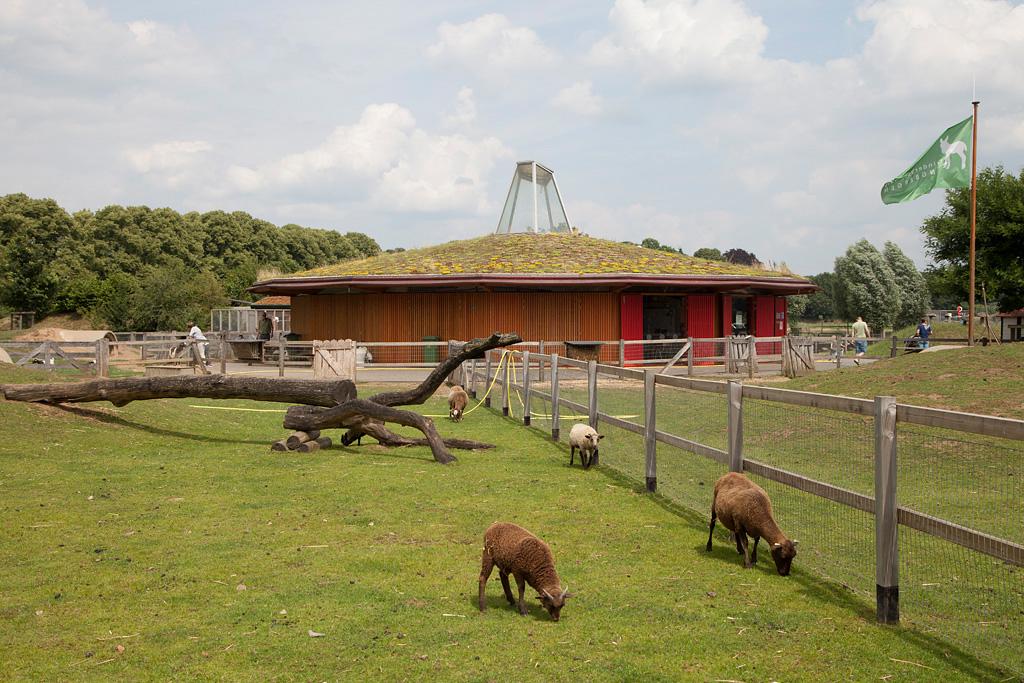 Kinderboerderij Engbergen - Gendringen - IMG_2616