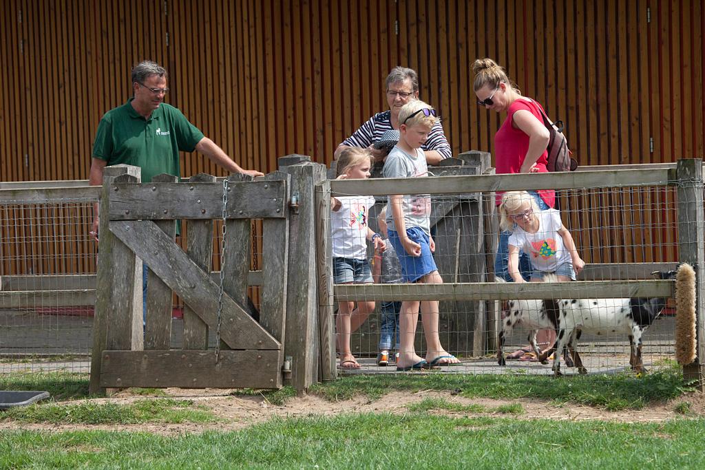 Kinderboerderij Engbergen - Gendringen - IMG_2690