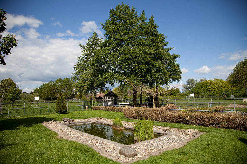 Kinderboerderij Kokiezier - Doetinchem - IMG_2300 Regio Achterhoek - Liemers