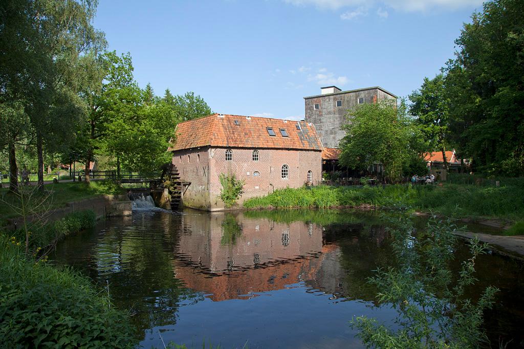 Berenschot 's Watermolen - Winterswijk Woold - IMG_1874