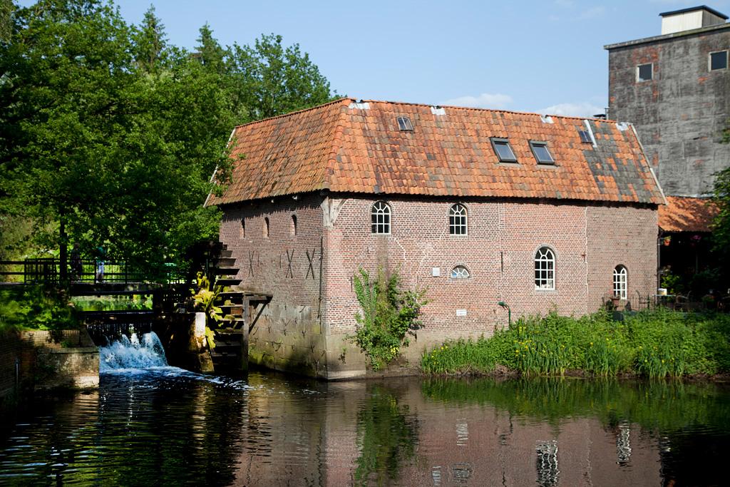 Berenschot 's Watermolen - Winterswijk Woold - IMG_1875