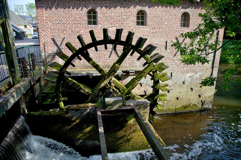 Berenschot 's Watermolen - Winterswijk Woold - IMG_1879 Regio Achterhoek - Liemers