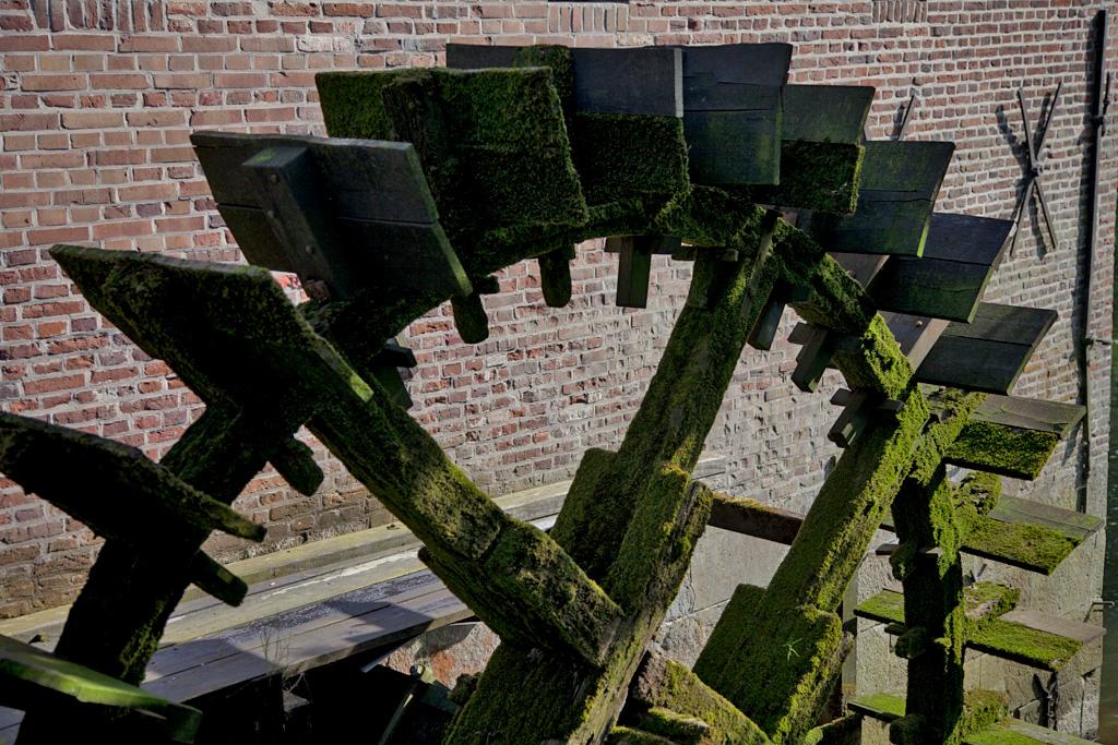Berenschot 's Watermolen - Winterswijk Woold - IMG_1881