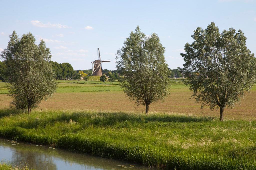 Bronkhorster Molen - Steenderen - IMG_2519