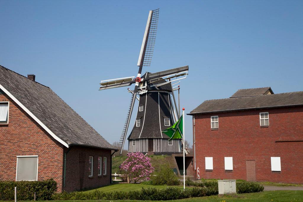 Meenkmolen - Winterswijk Miste - IMG_0719