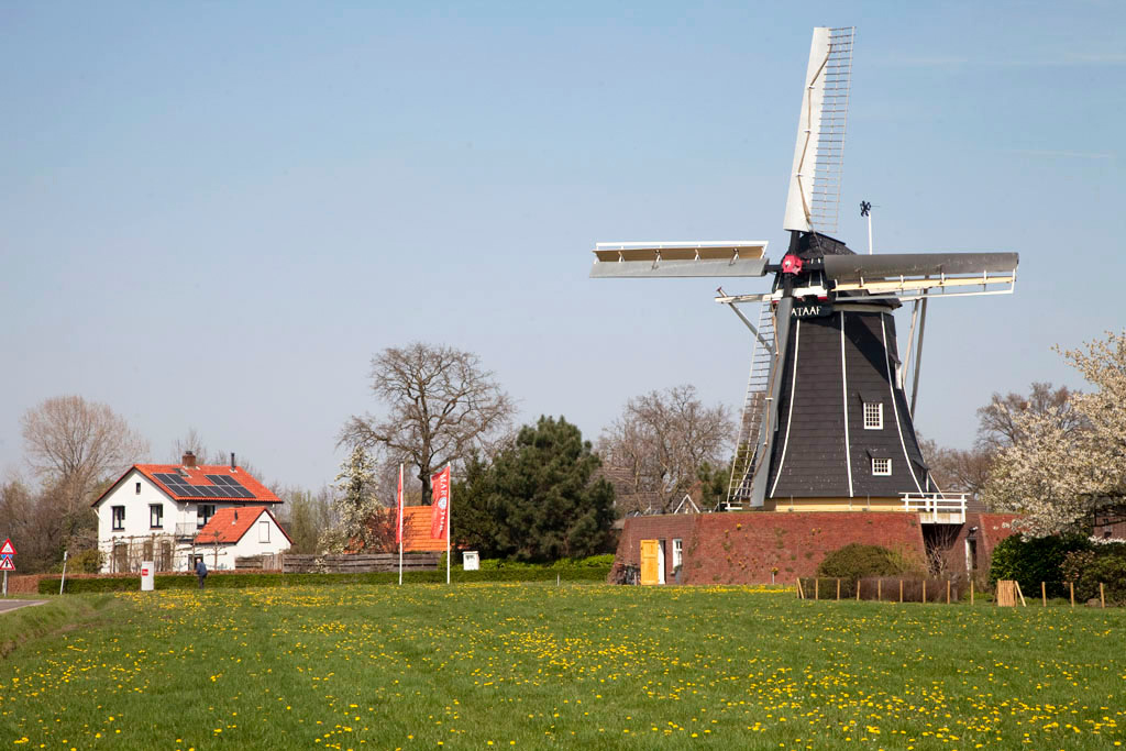 Molen Bataaf - Winterswijk - IMG_0929 Regio Achterhoek - Liemers