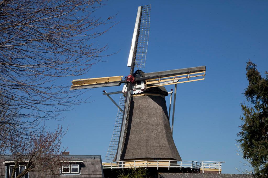 Molen de Hoop - Oud Zevenaar - IMG_0177 Regio Achterhoek - Liemers