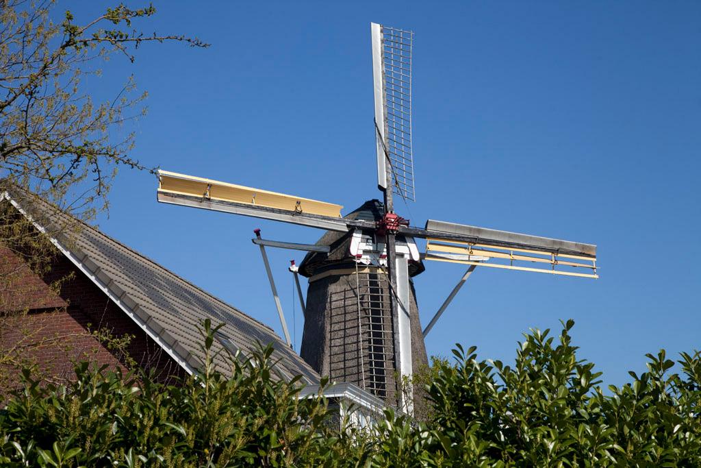 Molen de Hoop - Oud Zevenaar - IMG_0198 Regio Achterhoek - Liemers