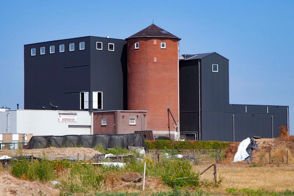 Molen van Rijswijk - Wehl - IMG_4818 Regio Achterhoek - Liemers