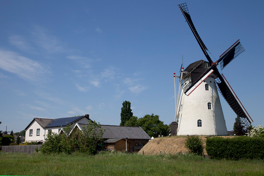 Molen De Volharding - Zeddam - IMG_1161