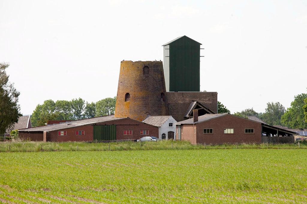 De molen van Berntsen - Loerbeek - IMG_1466 Regio Achterhoek - Liemers
