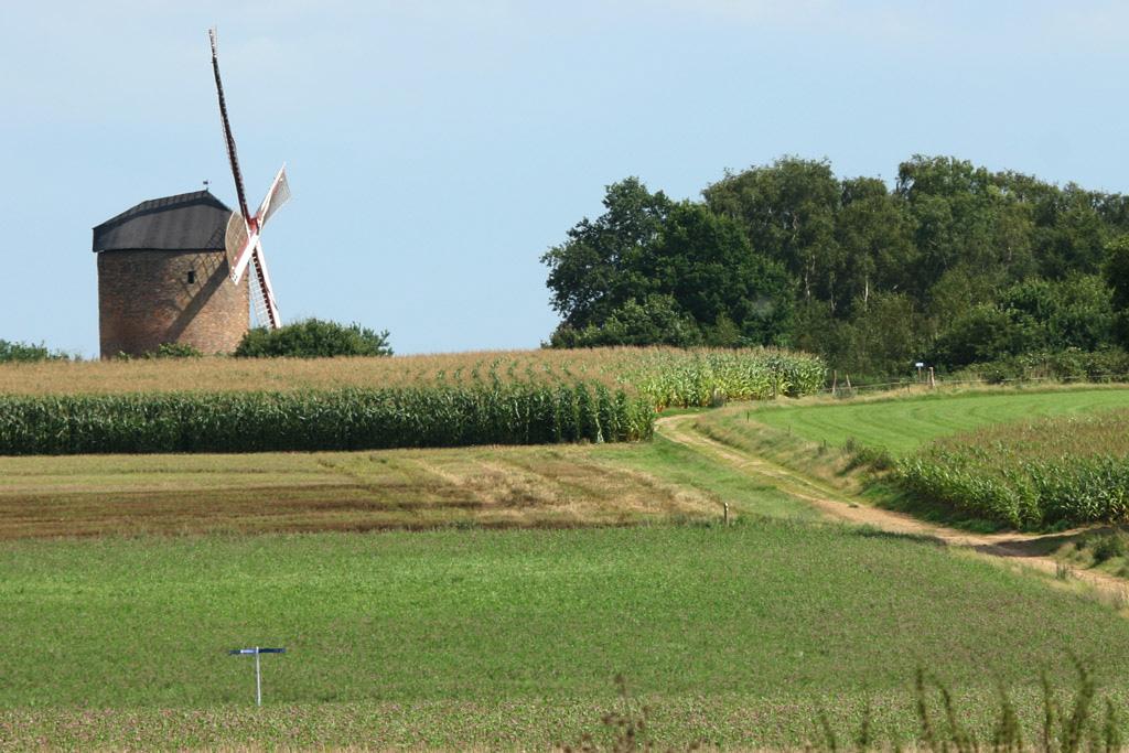 De Grafelijke Torenmolen - Zeddam - IMG_0035 Regio Achterhoek - Liemers