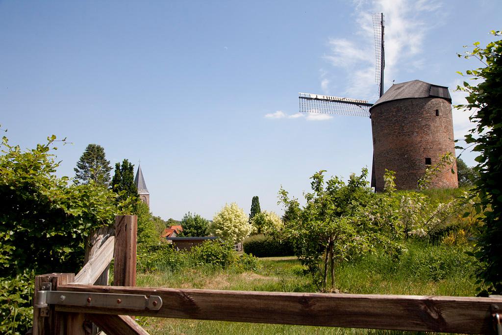 De Grafelijke Torenmolen - Zeddam - IMG_1339 Regio Achterhoek - Liemers