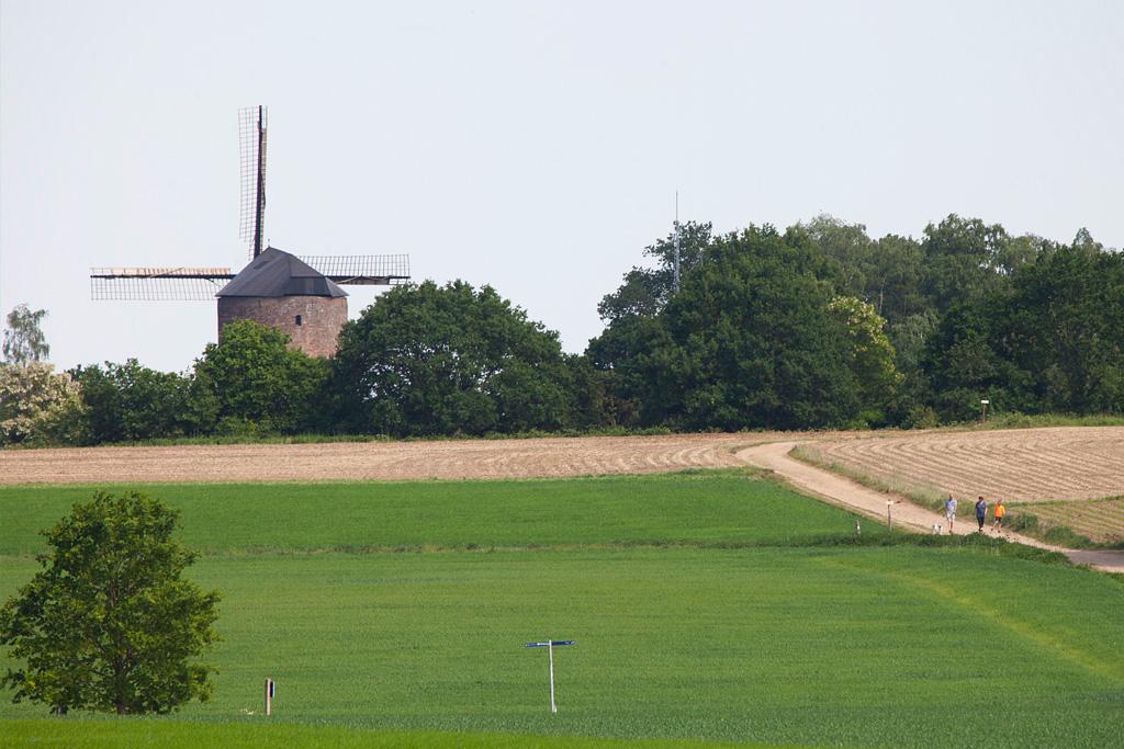 De Grafelijke Torenmolen - Zeddam - IMG_1450
