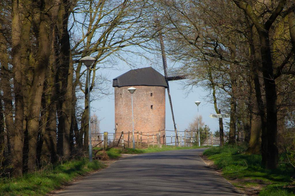 De Grafelijke Torenmolen - Zeddam - IMG_8172 Regio Achterhoek - Liemers
