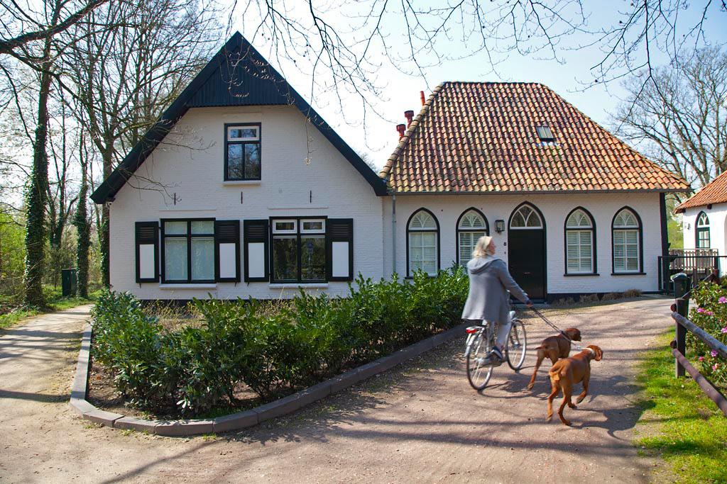 Watermolen Den Helder - Winterswijk - IMG_0887