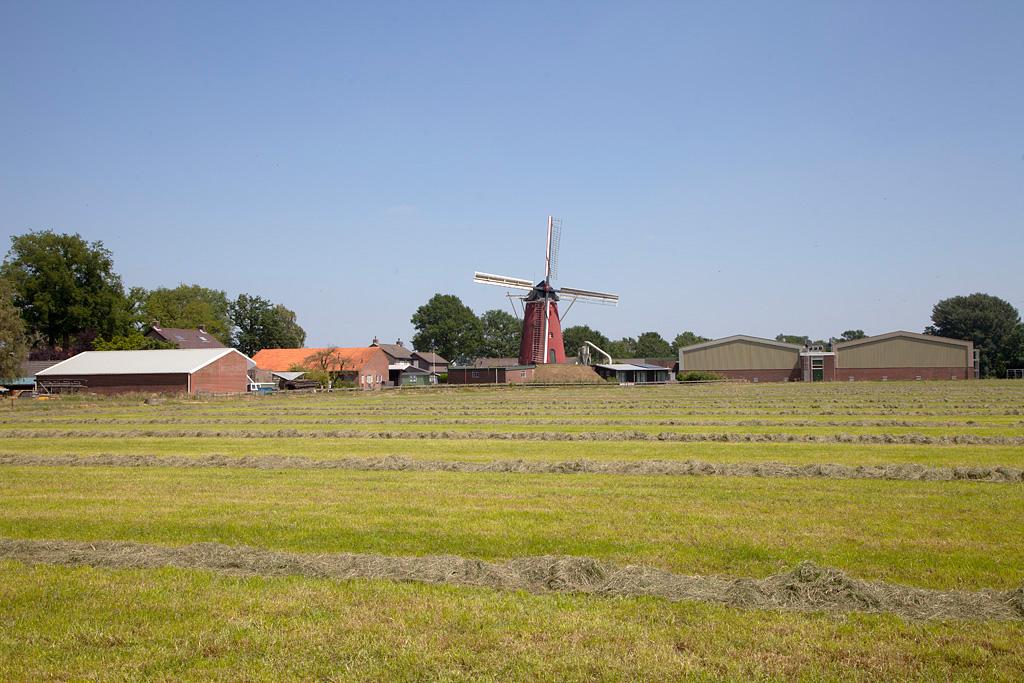 Wenninkmolen - Lintelo - IMG_2065