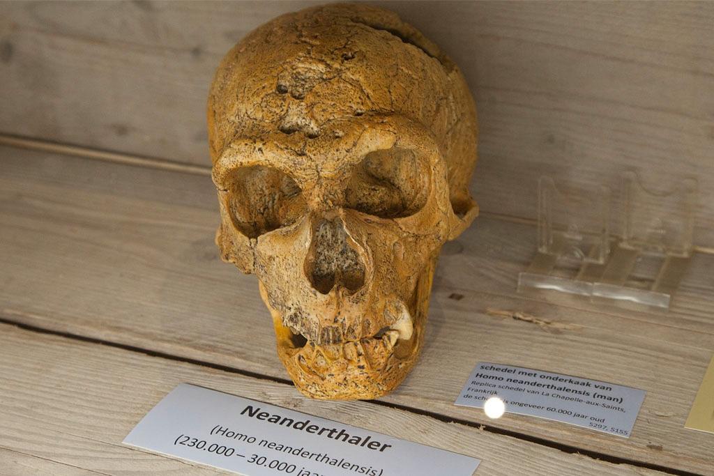 Bezoekerscentrum Min40celsius - Varsselder - IMG_1725