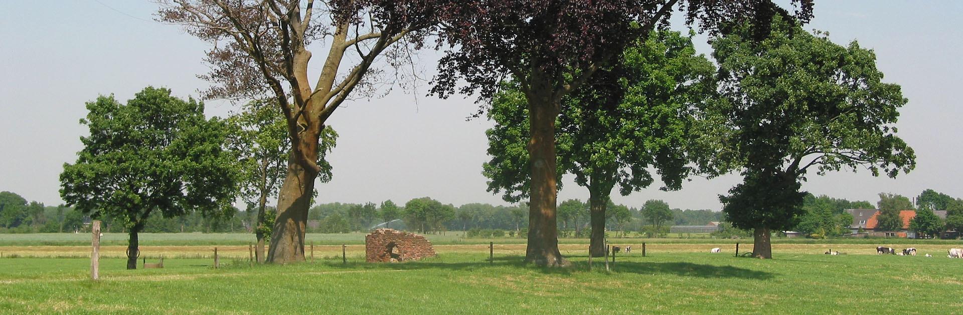 Kasteel De Swanenburg - Gendringen