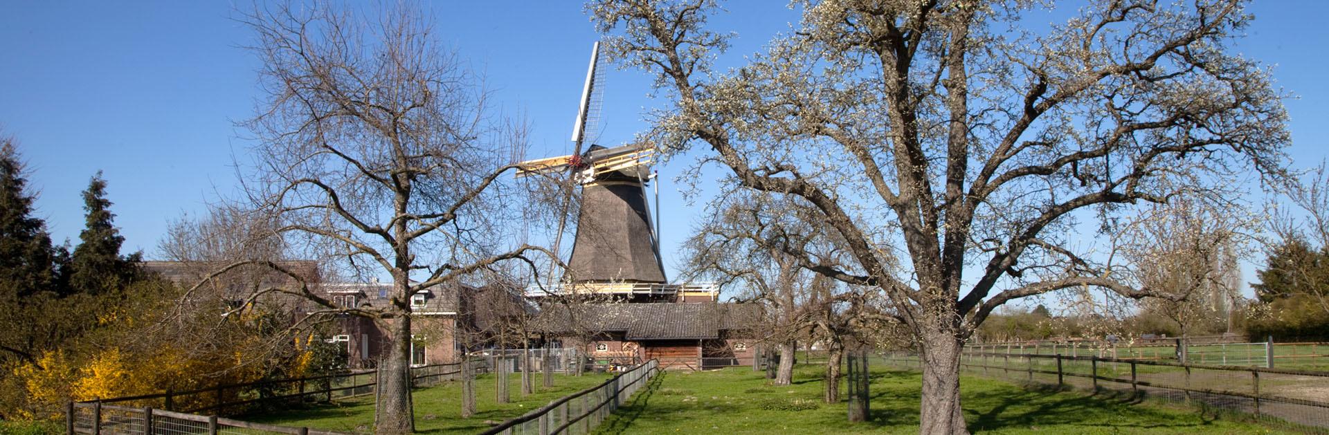 Molen de Hoop - Oud Zevenaar Regio Achterhoek - Liemers